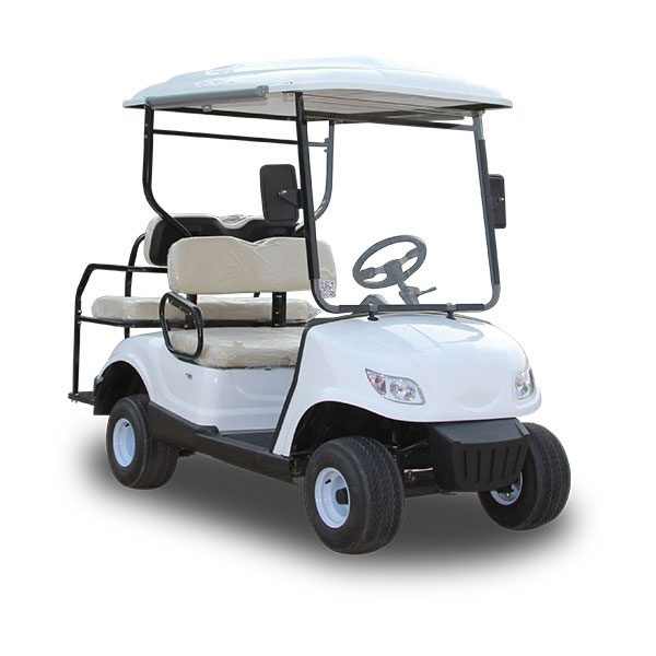 electric golf buggy for sale with free maintenance batteries