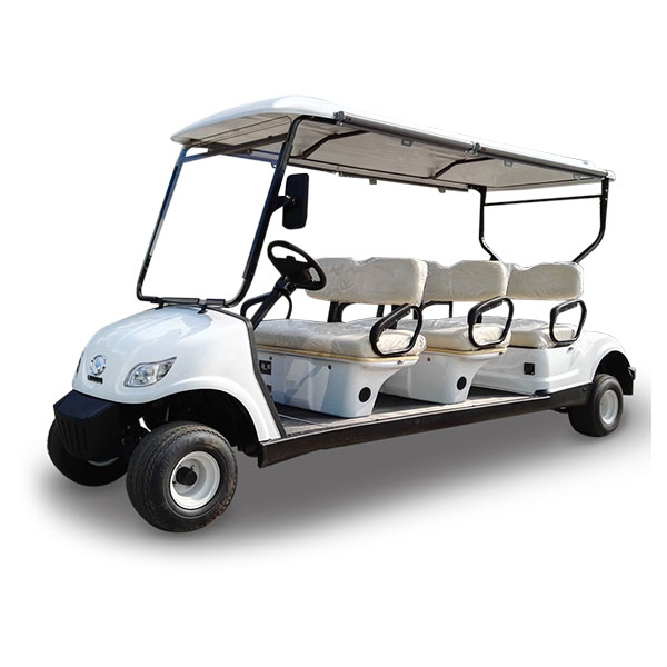 Mini electric golf cart for sale 6 passenger LQY065